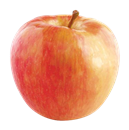 Small Honeycrisp Apples
