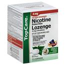 Top Care Nicotine Polacrilex Lozenges 4 Mg Stop Smoking Aid, Mint Flavor