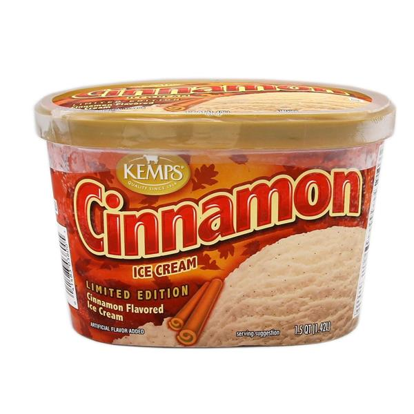 Kemps Cinnamon Ice Cream