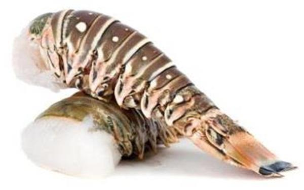 Spiny Lobster Tail | Hy-Vee Aisles Online Grocery Shopping