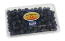 Sun Belle Blueberries
