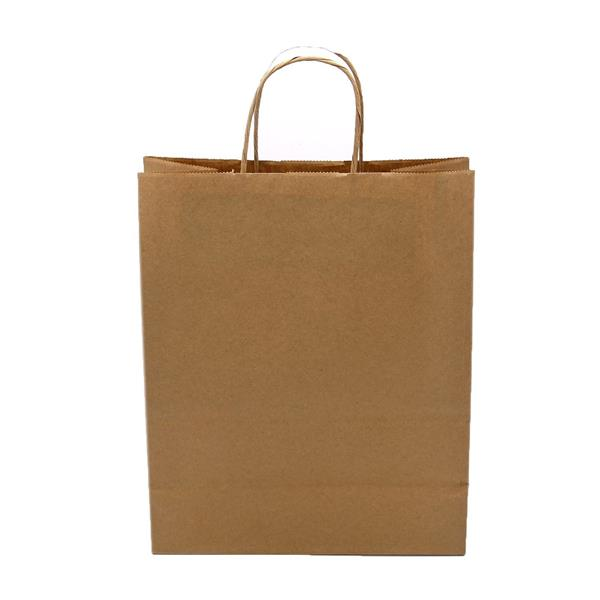 Large Plain Gift Bag